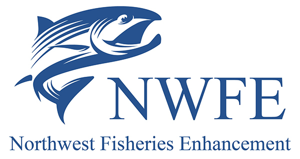NWFE_Logo__1_84472